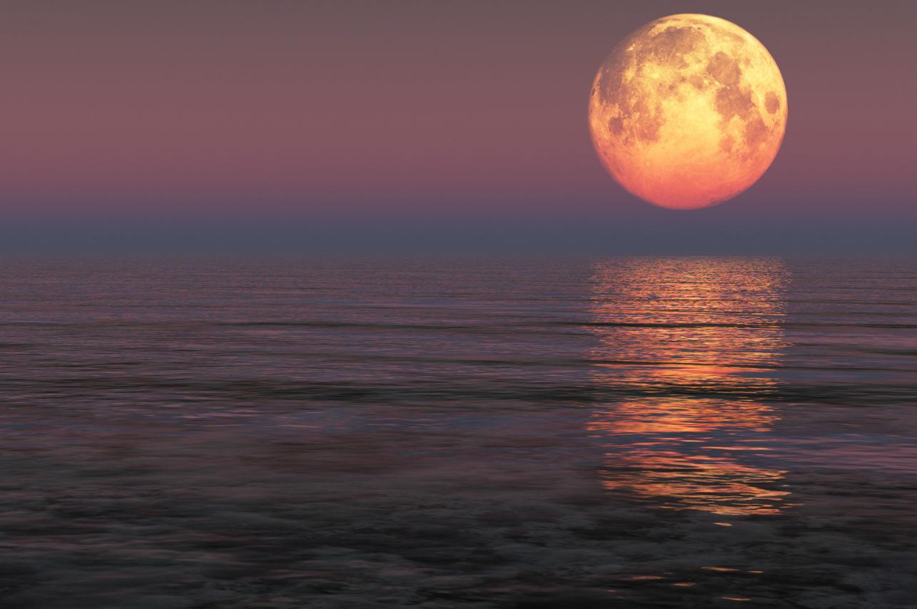 Prepárate para recibir la primavera con la Superluna de marzo