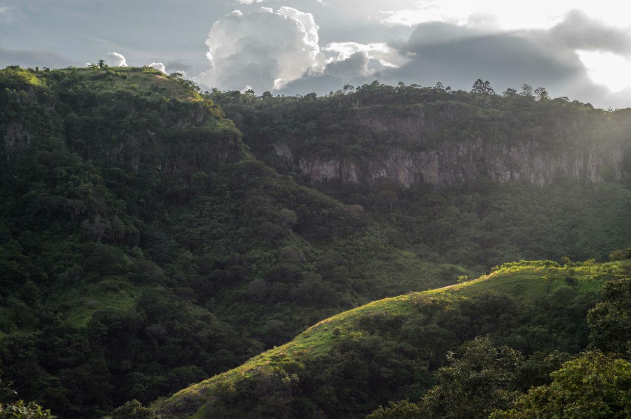 10 fotos que te harán querer conocer los grandes cafetales mexicanos