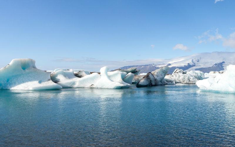 Existe un museo de penes y te está esperando en Islandia